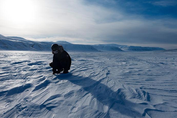 Melissa Schäfer Arctic Svalbard Polar bear Fredrik Granath