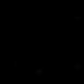 TheMotherbear_logo 100 pxl web PNG.png