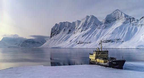 freya spitzbergen cruise spitsbergen photography eisbär