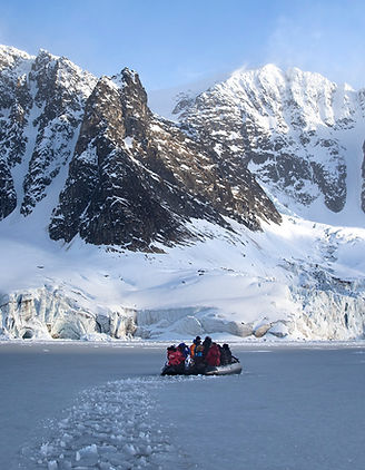 arktis adventure cruise arctic polar bears