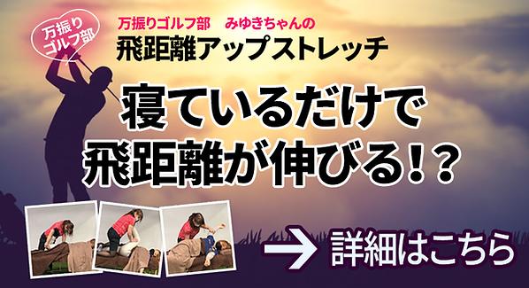 みゆきちゃんストレッチバナー.png