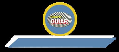 Grupo Guiar.png