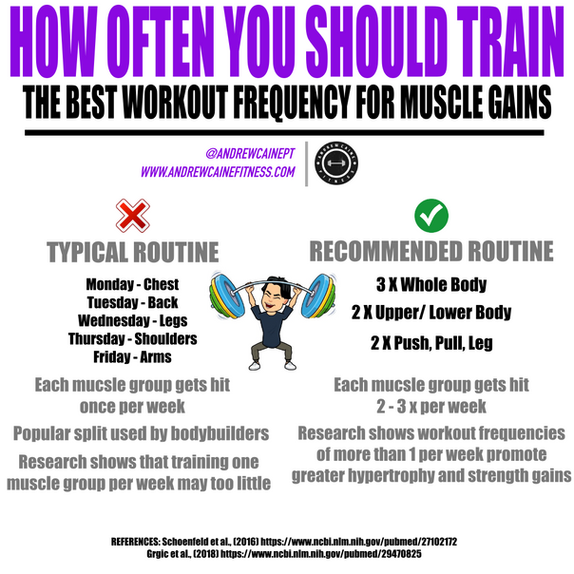 How Often Should You Workout?!