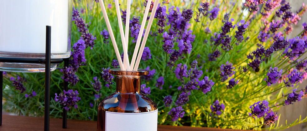 CALM Ombre Glass Reed Diffuser- 140ml