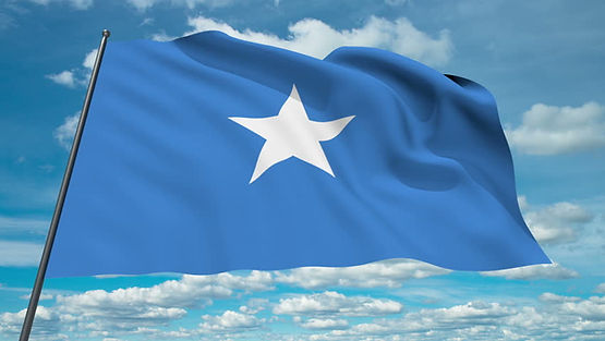Why Should Somalia Join the WTO?