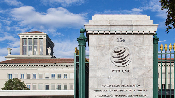 Transparency and Public Participation in WTO Dispute Settlement