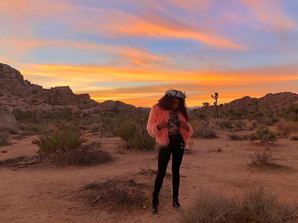 Joshua Tree_Bella Against the Sunset.JPG