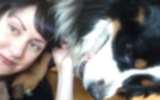 StayCare Pet Sitting, Bay Area, Monterey, Rover, Carmel