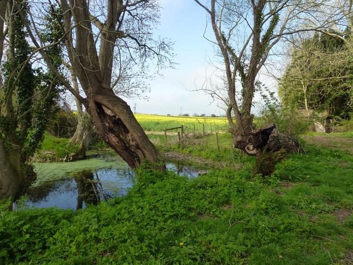East Lydford, Somerset