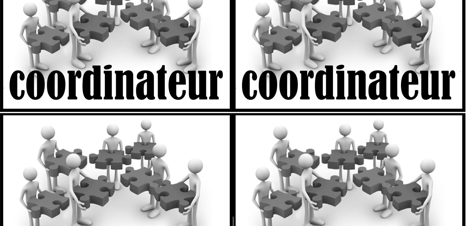 cartes_COORDINATEUR_(X8)[1].jpeg