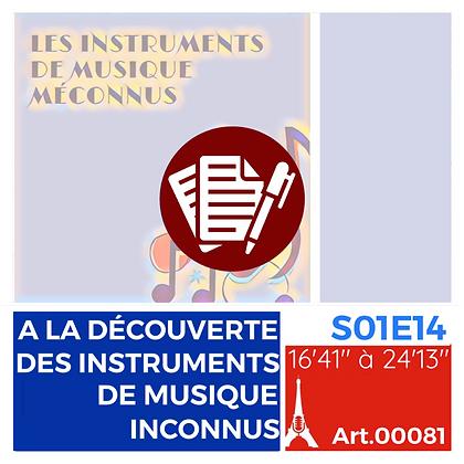 WS-S01E14A00081 À LA DÉCOUVERTE DES INSTRUMENTS DE MUSIQUE INCONNUS