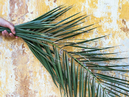 St. Joseph Anglican Church hosts special Palm Sunday service