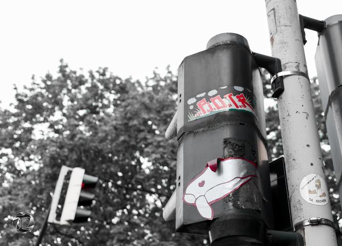 Street: Cologne