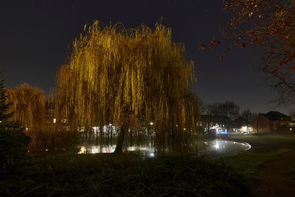 20-12-15_Venlo_Mistige nacht_0 2.jpg