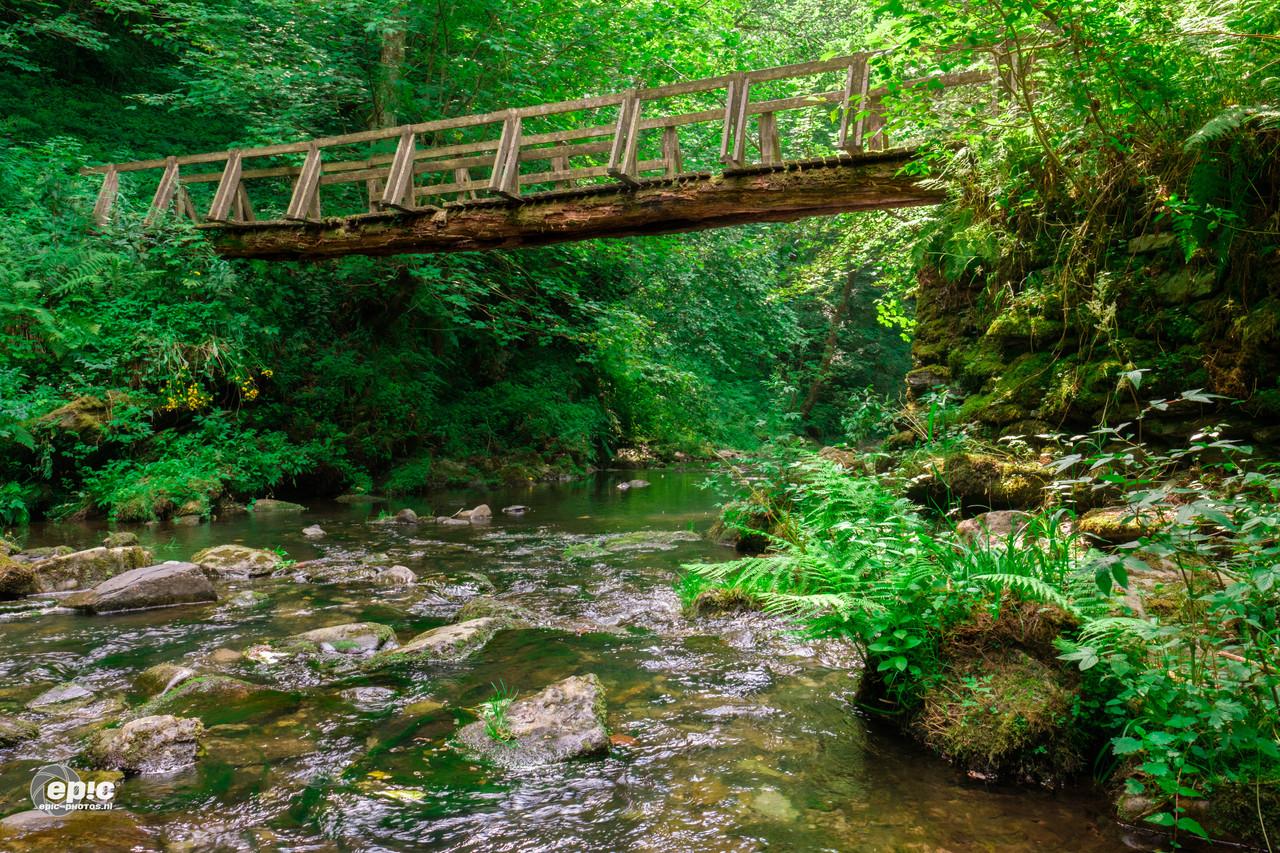 Reinhardstein: River/Stream Warche