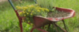 wheel-barrow-1168587_1920.jpg