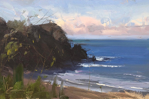 Maui shore study