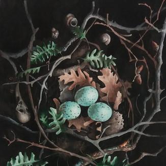 A nest (resurrection)