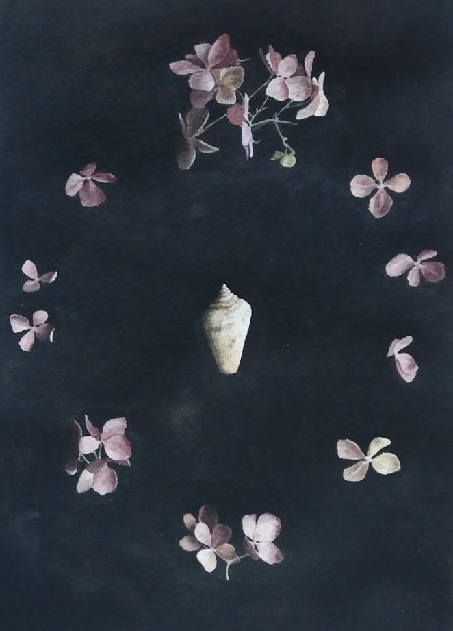 Still life with a seashell and hydrangeas