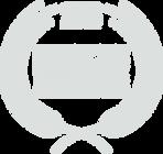 LoneStarFF_Logo_Light.png