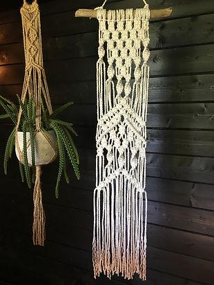 wall hanging, macrame, plant