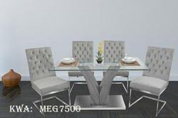 MEG7500