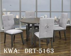 DRT-5163
