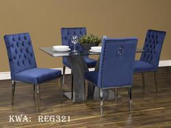 REG321