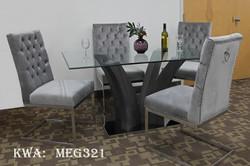 MEG321