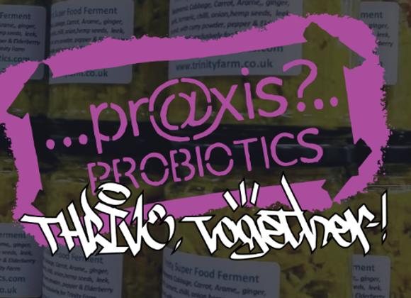 Praxis Pro Biotic Fermented Healing Food