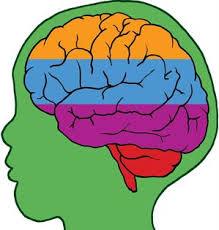 lapse aju ja kemikaalid