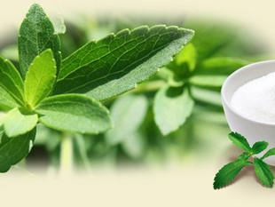 Stevia- plussid ja miinused