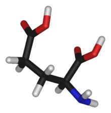220px-L-glutamic-acid-3D-sticks2