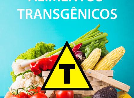 Alimento Transgênico