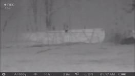 Thermal Night Scope Hunting Packages Texas Boars N Bucks