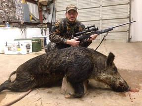 East Texas Rifle Hog Hunt
