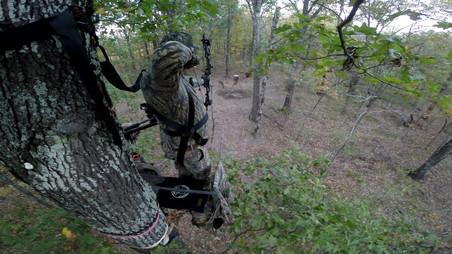 Bow Hunting Texas Boars N Bucks