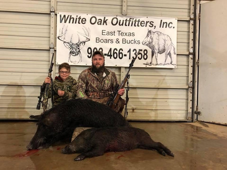 Texas Hog Hunting Outfitters - The Original & The Best Hog Hunt In Texas!