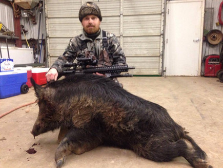 Great Trophy Boar Hunting Outfitters In Texas