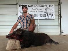 Nice Hog - Texas Hog Hunting Outfitters