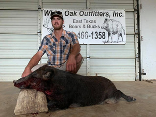 Nice Hog - Texas Hog Hunting Outfitters