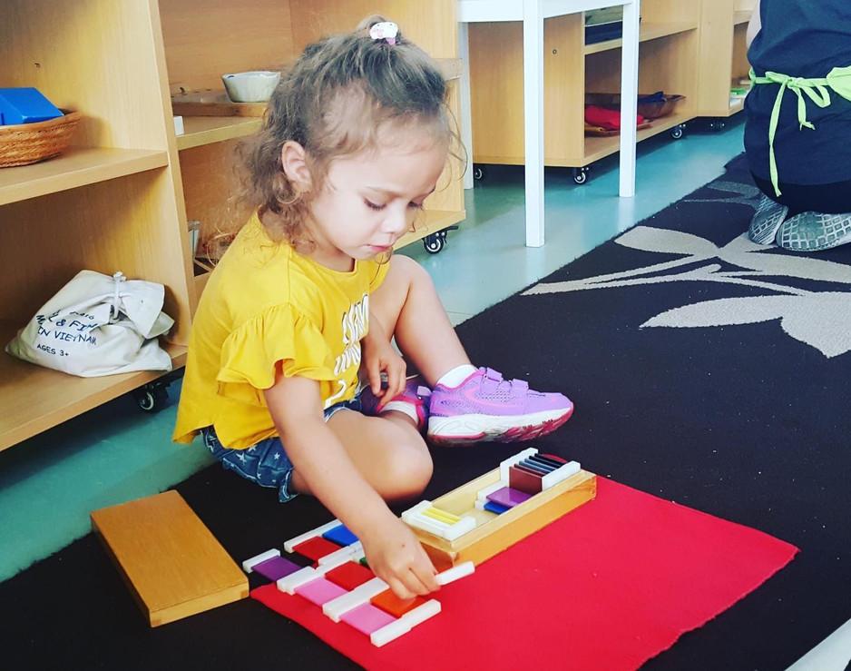 Montessori Day Care Reedy Creek