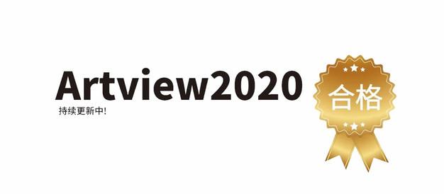 ARTVIEW·2020年合格实绩及考生感想