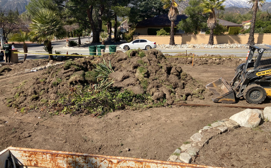 this must be the 500 thousandth ton of grass removed from this Land