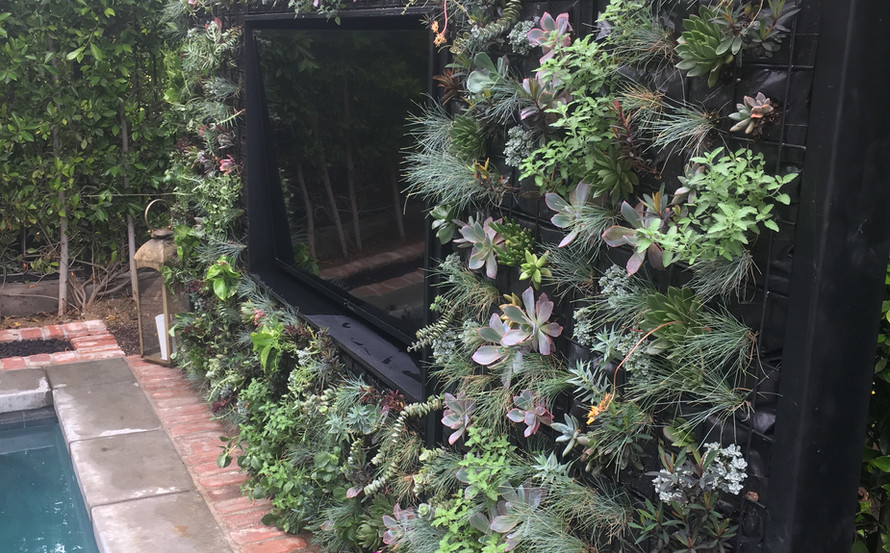 Sunset Crossing Living Wall