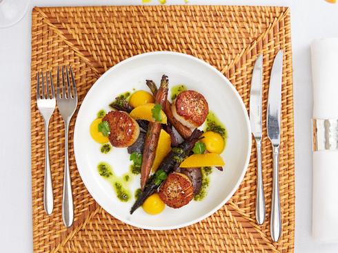 food24.jpg
