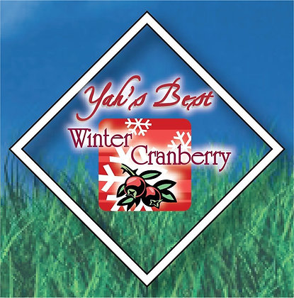 Winter Cranberry