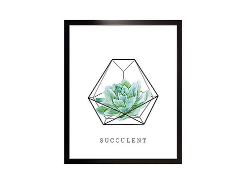 Framed Picture Succulent