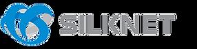 Silknet - Eng.png