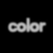 color (1) copy.png